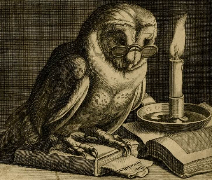 Owl reader