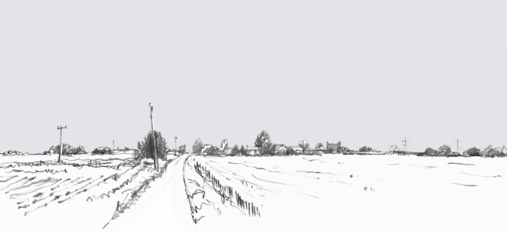 A Wider Horizon 3 (Rosie Redzia)